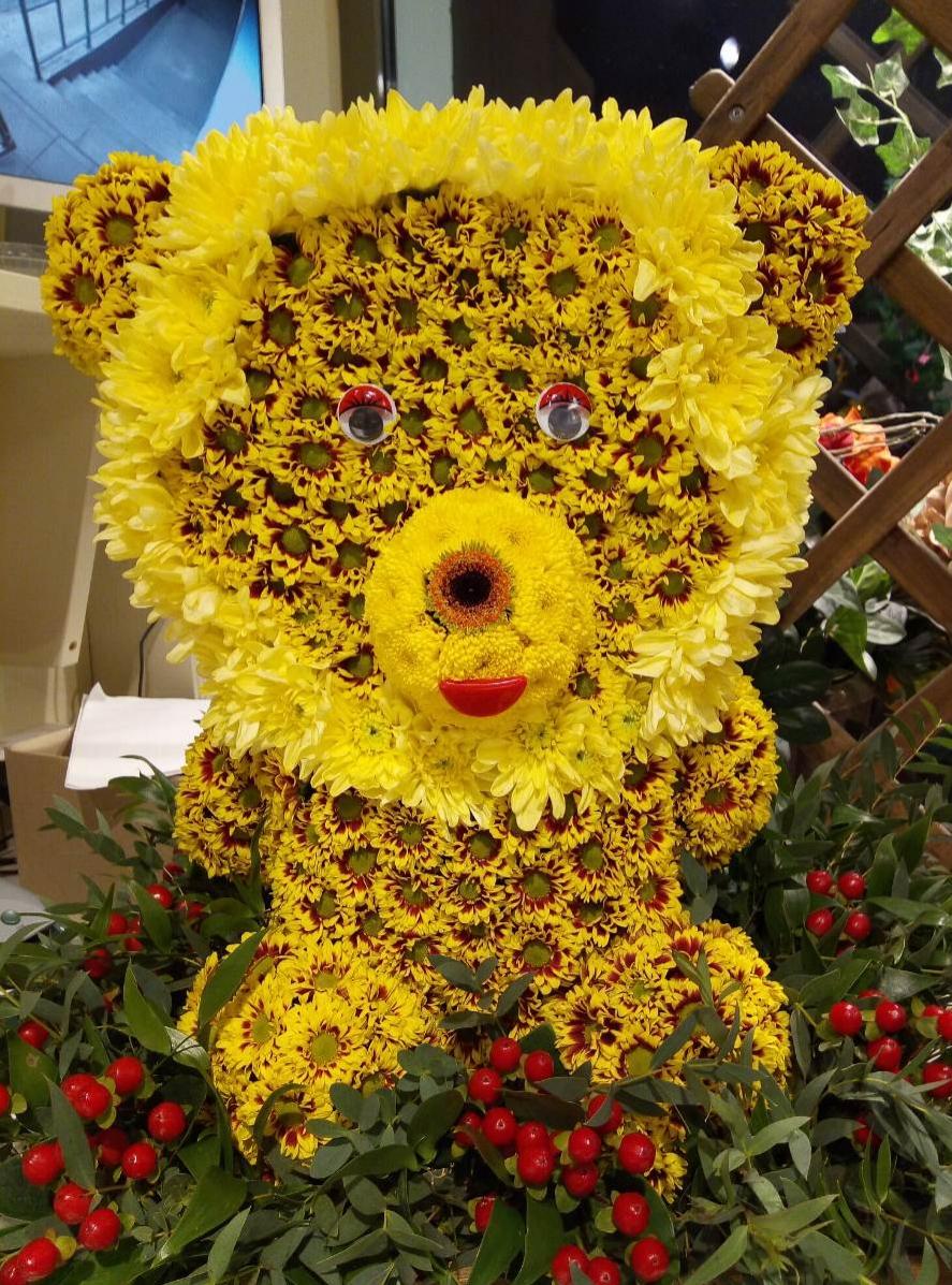 отдыха фото цветы для машеньки каждом