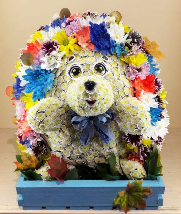 Букет Ежик из живых цветов